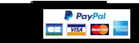 autocollant stickers paiement securise